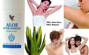 Aloe Ever-Shield No Stain Deodorant Stick-92.1g